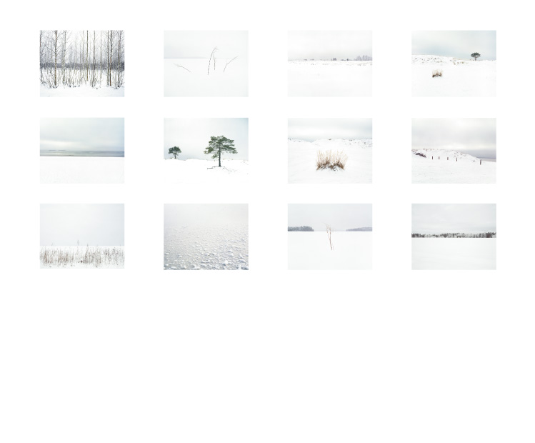 Download The Twelfth Day Contact Sheet